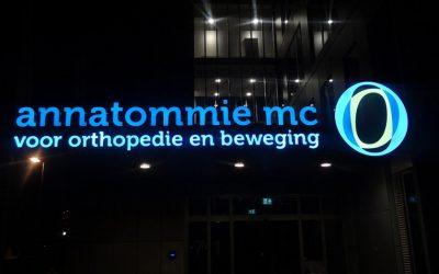 annatommie-mc